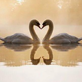 Spirituele blog over relaties